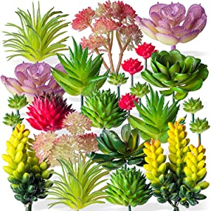 Housenior 24 Pack Mini Artificial Succulent Plants Unpotted : Fake Succulents Picks Realistic Plastic Cactus Stems for Terrarium Bulk Small Faux Assorted Arrangements Flocked Greenery