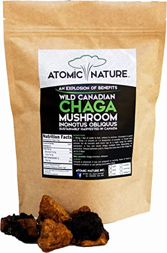 8oz Raw Organic Wild Chaga Mushroom Tea Chunks 100 Natural Hand-Harvested Canadian Forest Chaga Superfood