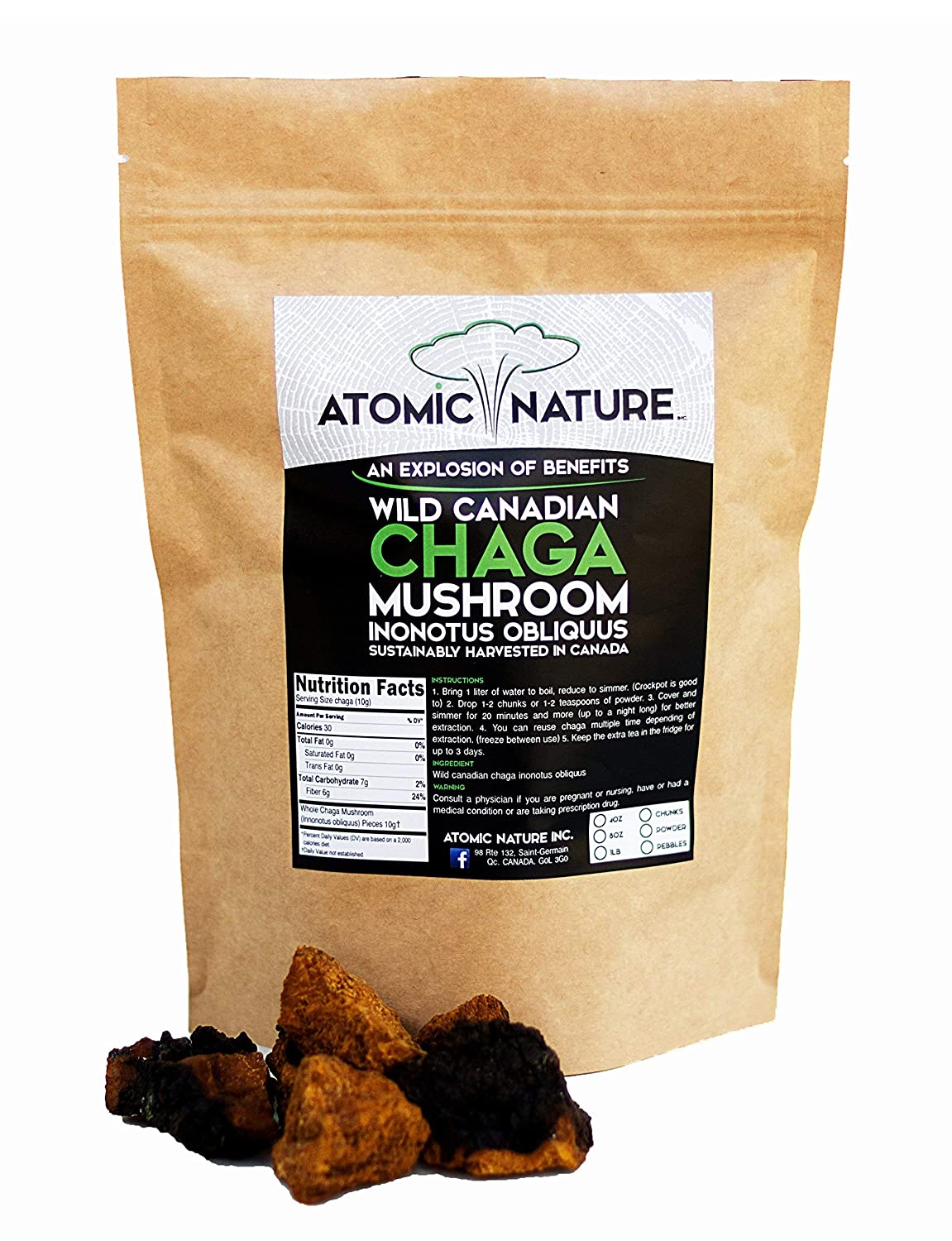 8oz Raw Organic Wild Chaga Mushroom Tea Chunks 100 Natural Hand-Harvested Canadian Forest Chaga Superfood, Healthy Immune System Booster Antioxidant