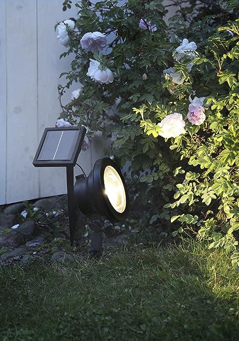 OFERTA de temporada: mágica LED Solar Spotlight para effektvollen iluminación de árboles, arbustos, plantas, estanques o