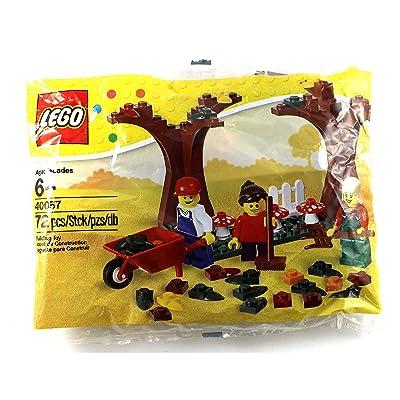 LEGO Seasonal Set Fall Scene (40057): Toys & Games