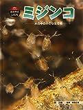ミジンコ―水の中の小さな生き物 (科学のアルバム・かがやくいのち)