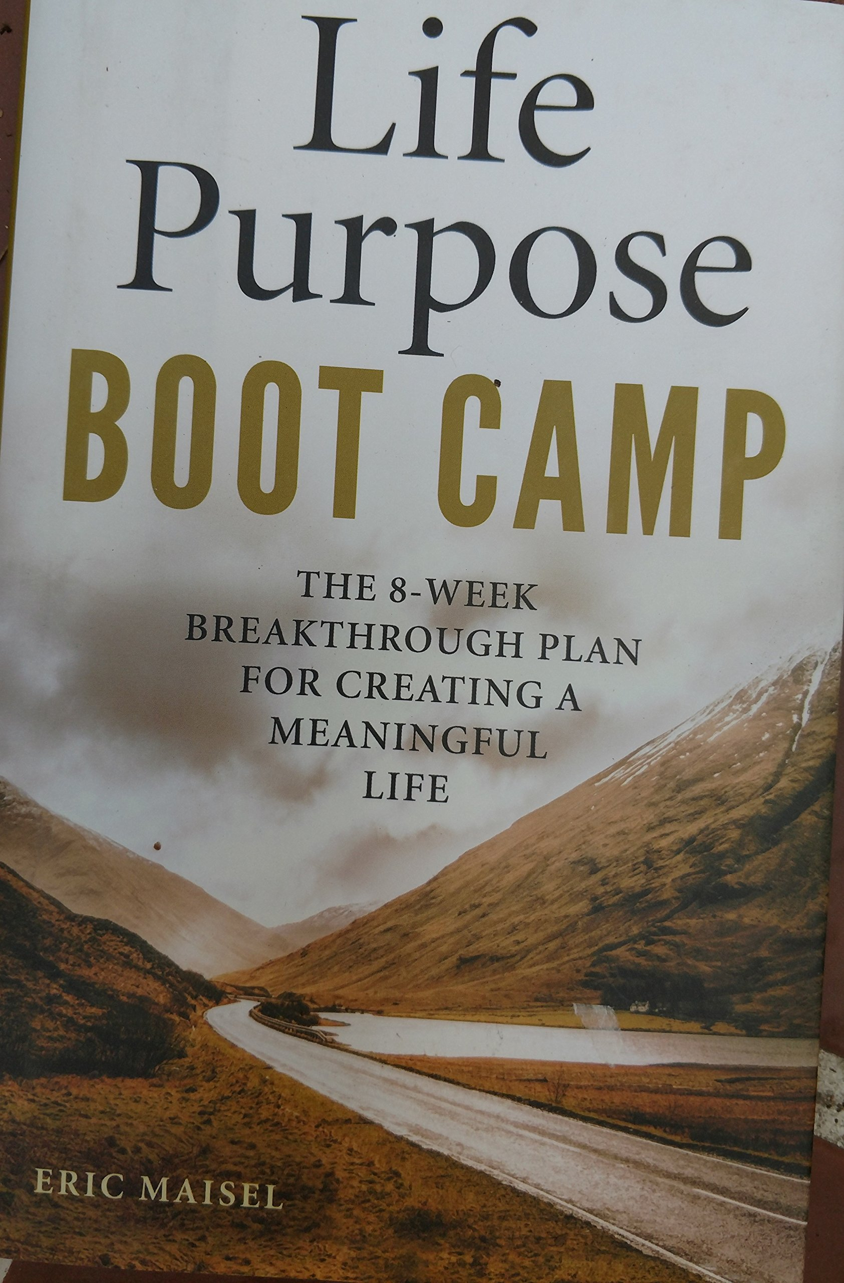 Life Purpose Boot Camp: The 8-Week Breakthrough Plan for Creating a Meaningful Life PDF
