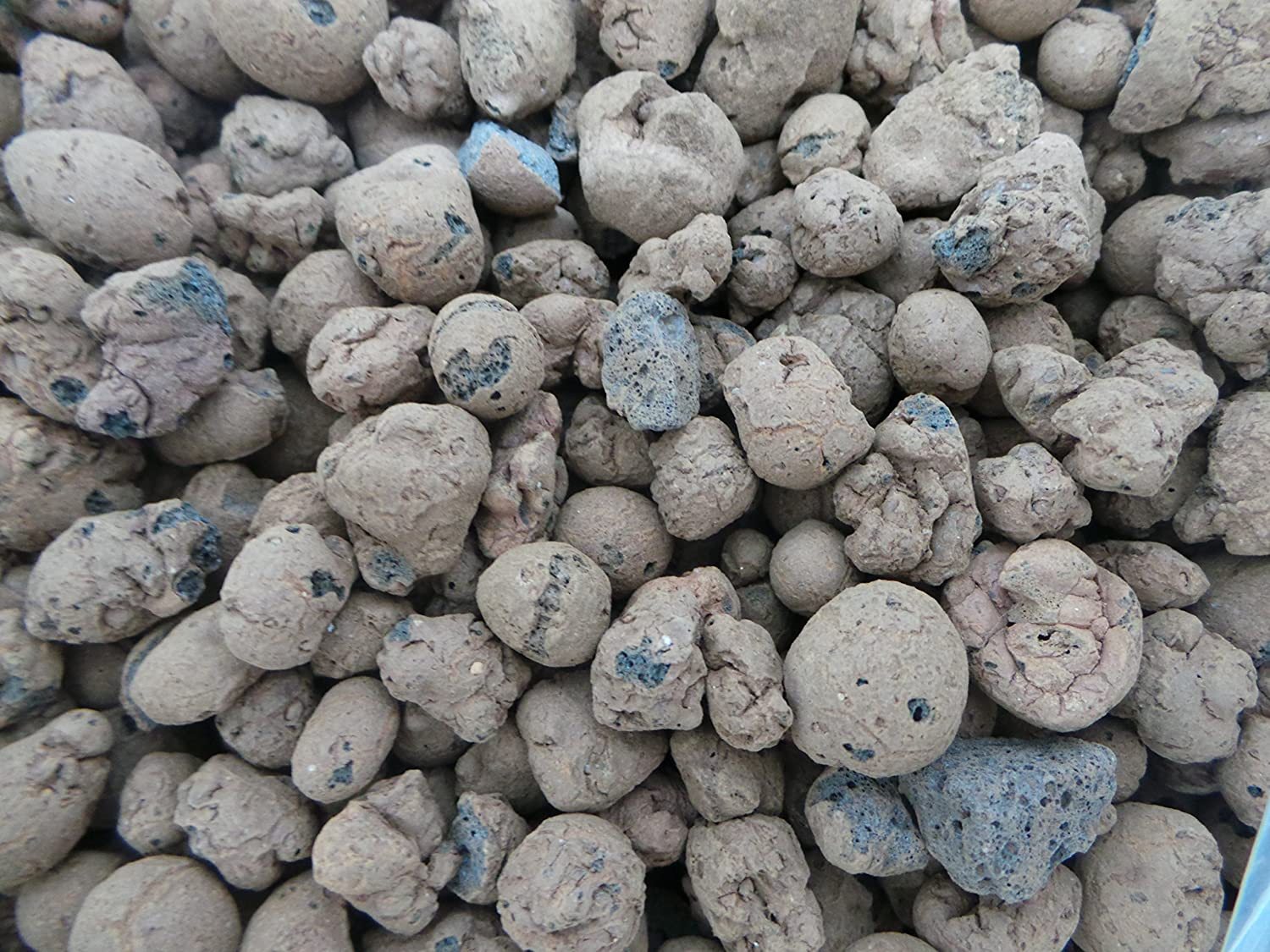 Sinclair 5L Bag Of Hydoleca Clay Pebbles Add To Compost To Reduce Root Rot