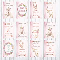 Woodland Animals Baby Milestone Cards