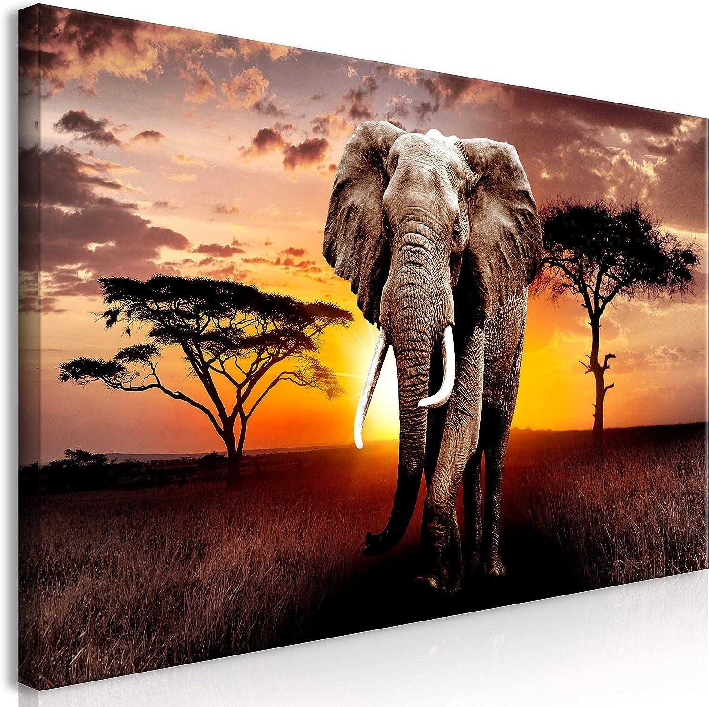 murando Cuadro Mega XXXL Elefante 170x85 cm Cuadro en Lienzo en Tamano XXL Estampado Grande Gigante Imagen para Montar por uno Mismo Decoración De Pared Impresión DIY Paisaje Africa g-C-0054-ak-f