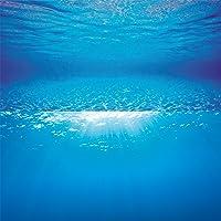JUWEL Poster 2 Décor de Fond pour Aquariophilie 150 x 60 cm Taille XL