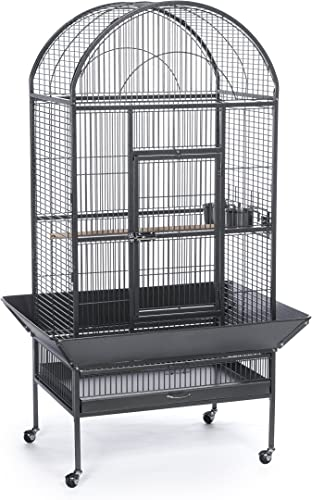Prevue Pet Products 34531 Hammer Tone Dome Top Bird Cage, Large, Black