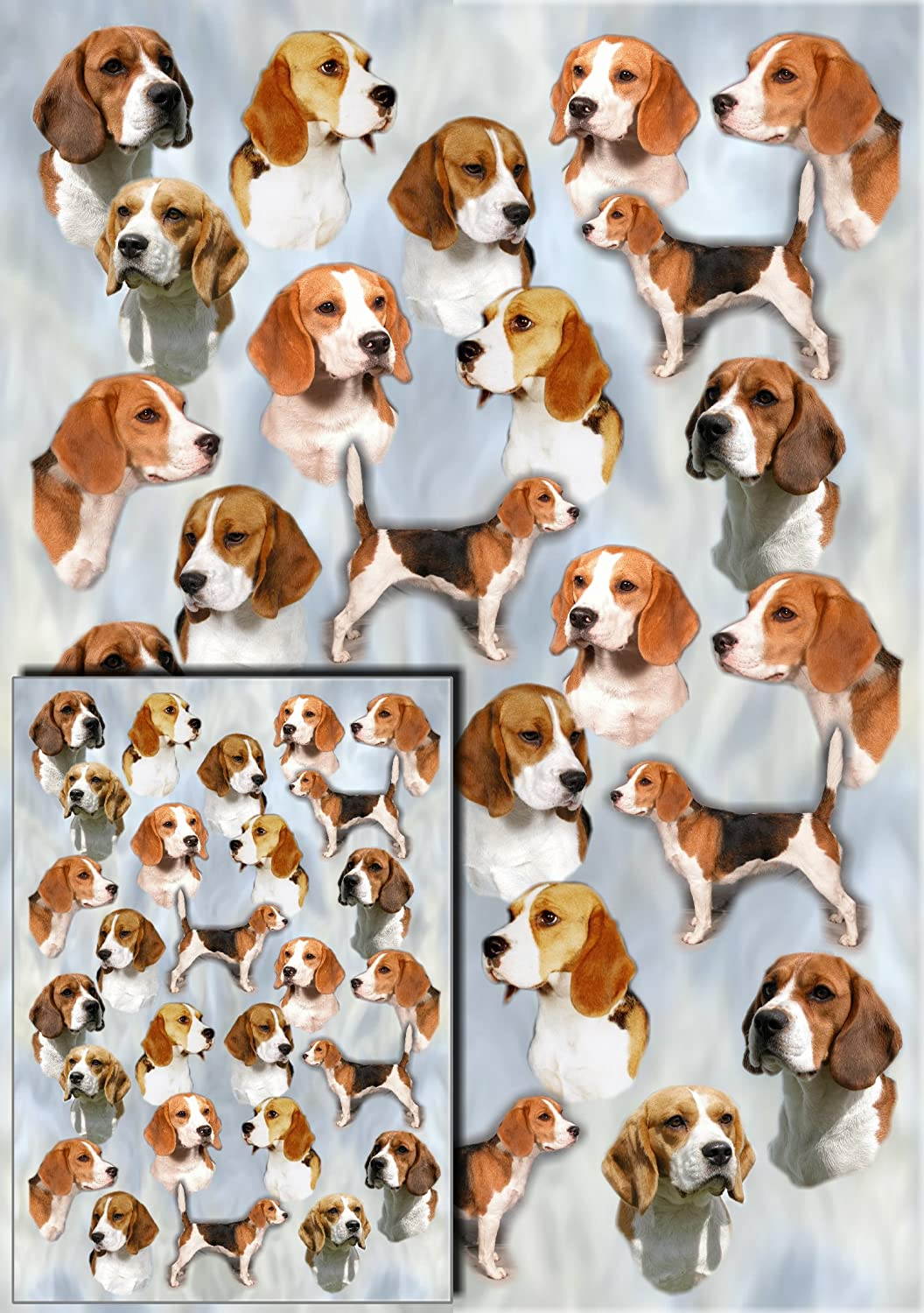 Beagle Gift Wrapping Paper with Small Gift Card Design by Starprint ...
