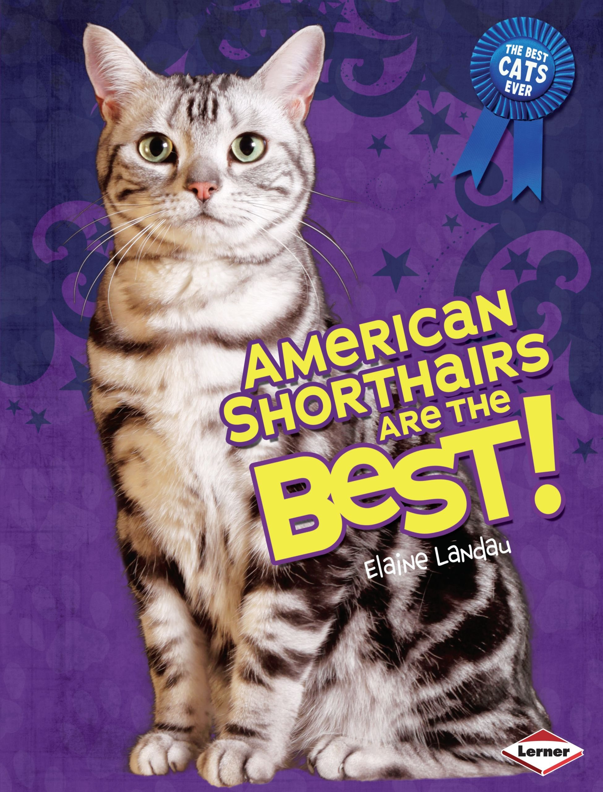 American Shorthairs Are the Best! (The Best Cats Ever)