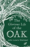 The Glorious Life of the Oak