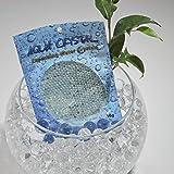 'Aqua Crystal' Expanding Water Storing Gel Bead Crystals - CLEAR - 20g bag