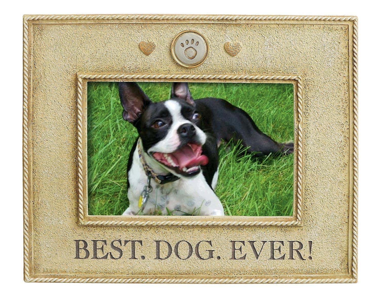 Amazoncom Grasslands Road Best Dog Ever Picture Frame 4 By 6