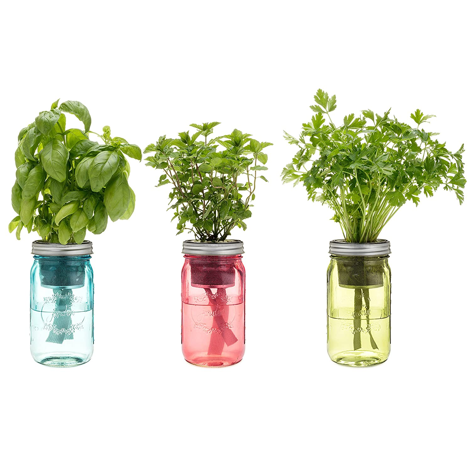 Amazon.com : Kitchen Herb Kit   Three Self Watering Indoor Planters With  Organic Basil, Organic Parsley, And Non Gmo Mint Seeds. : Garden U0026 Outdoor