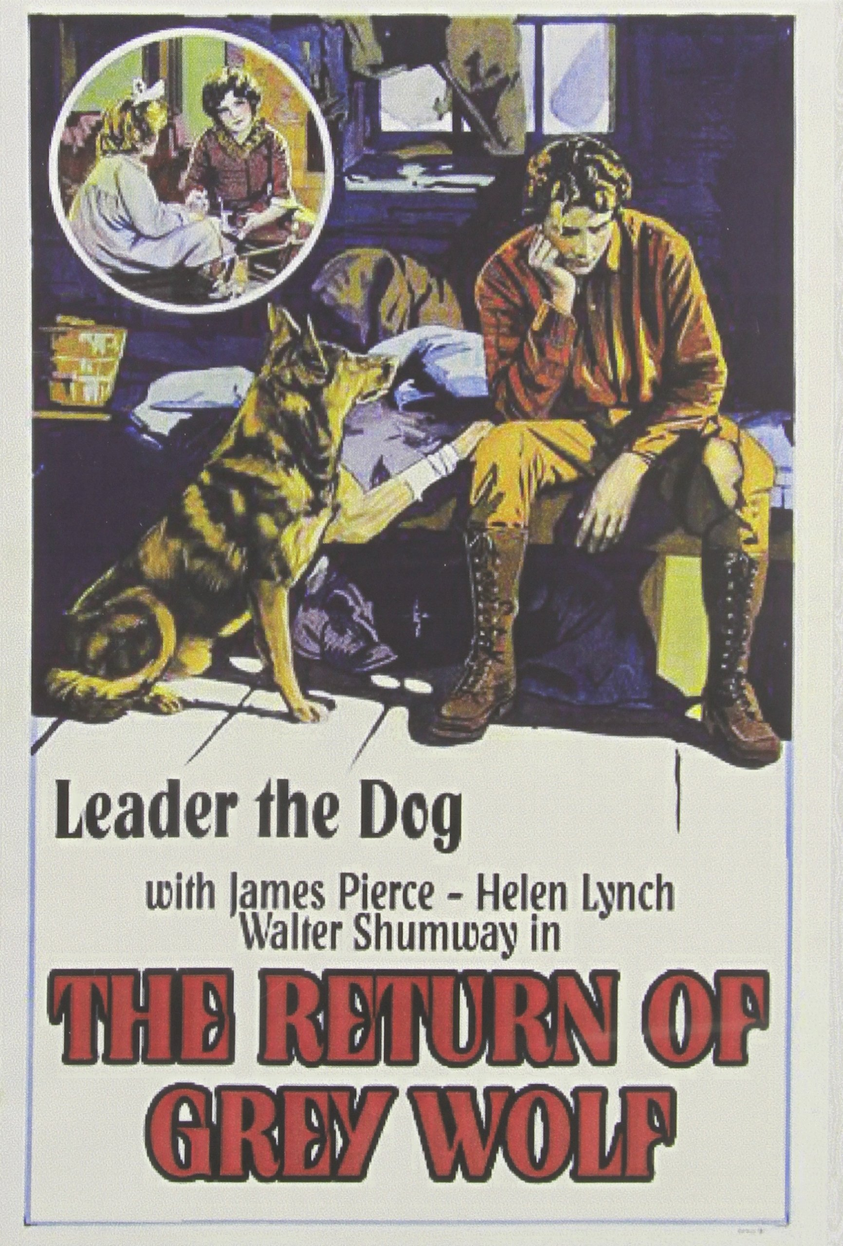 DVD : The Return Of Grey Wolf (Black & White, Silent Movie)
