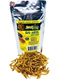 Iso Meal - Advanced Isopod Nutrition - Oven Dried Mealworms - Bioactive Invertebrate Clean Up Crew, Cuc Food, Treat, Snack, Hermit Crab, Exotic Animal Pet, Natural, Product of The USA