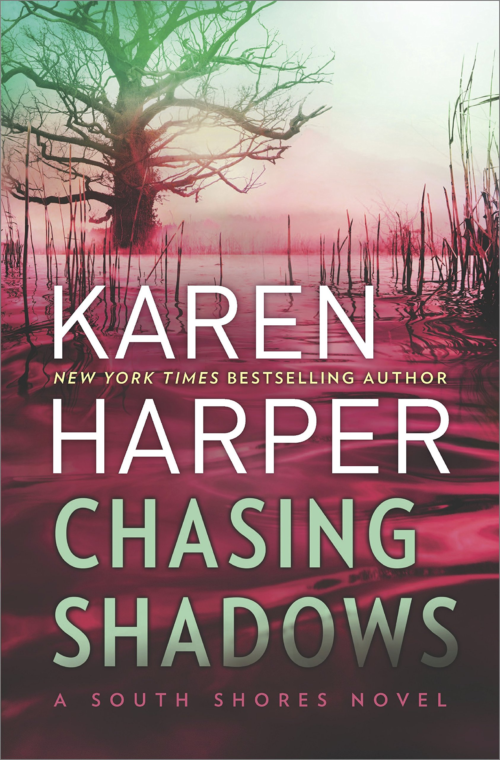 Chasing Shadows (south Shores): Karen Harper: 9780778330554: Amazon:  Books