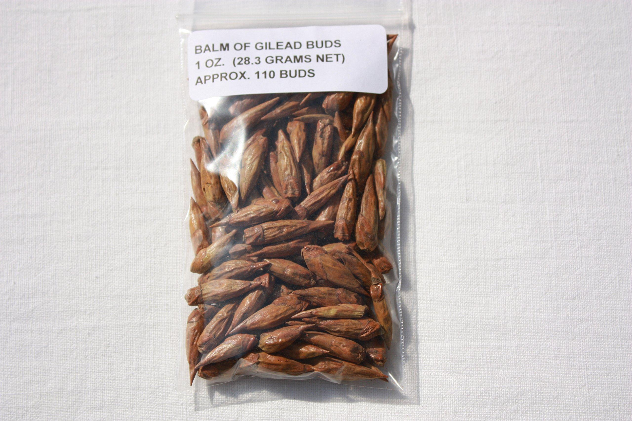 Bulk Herbs: Balm of Gilead Buds - 3 oz (Cottonwood Tree) Wicca Pagan Magick
