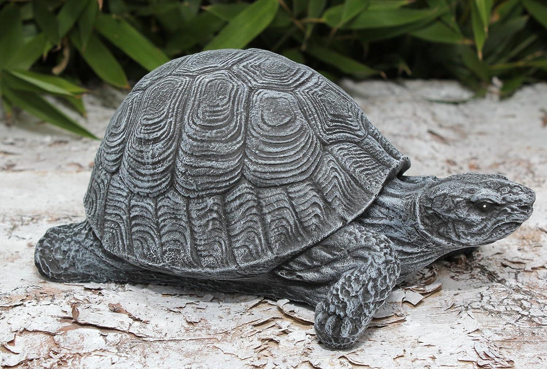 Beste Druckbare Malvorlagen Schildkröten Zeitgenössisch ...