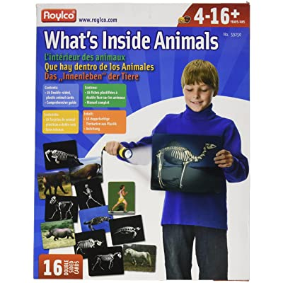 Whats Inside Animals Flash Cards: Industrial & Scientific