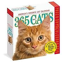 365 Cats 2019 Calendar