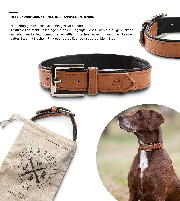 Jack & Russell Premium Leder Hunde Halsband Lilly - Lederhalsband ...