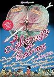 Laberinto de pasiones [DVD]
