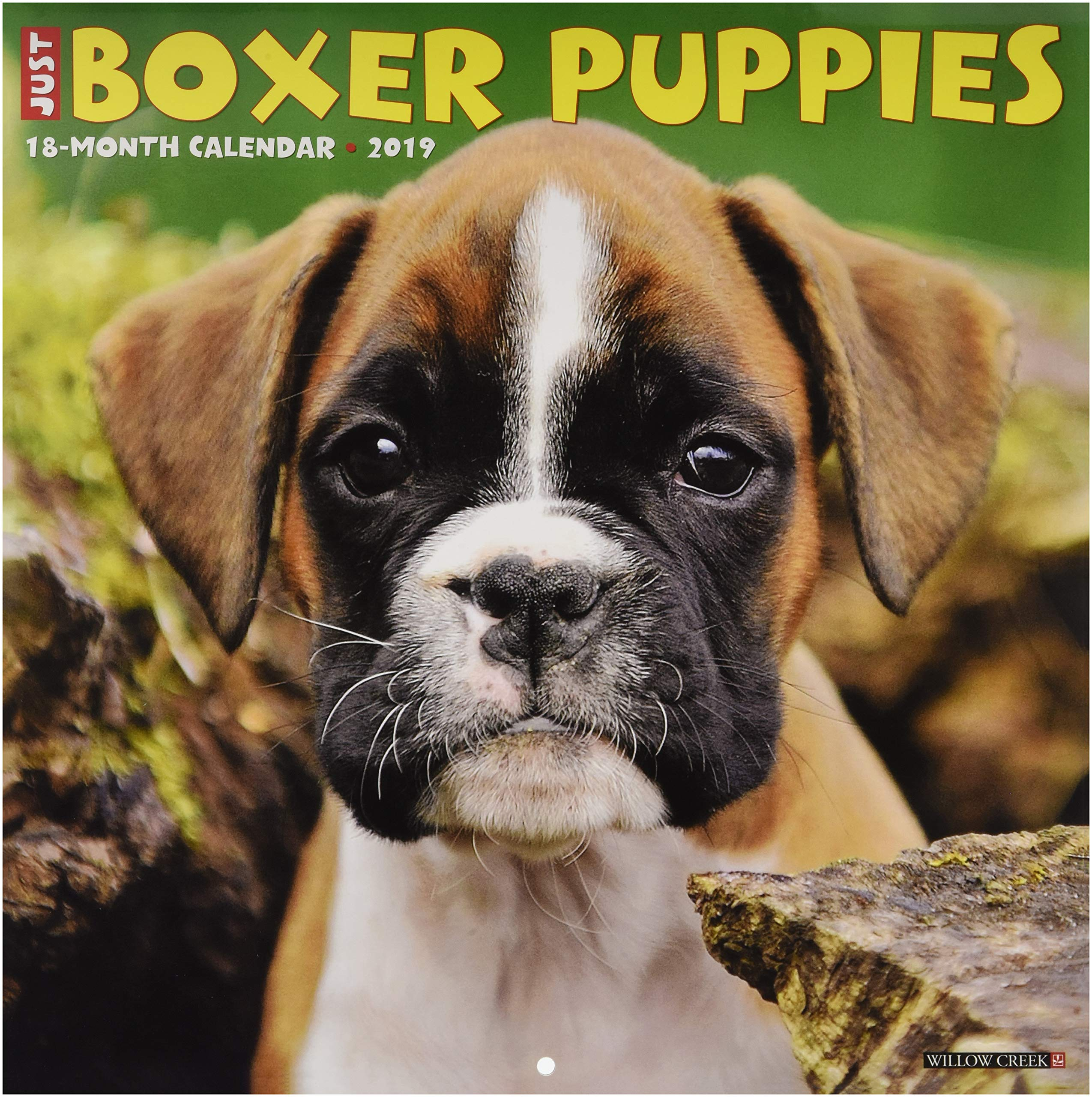 Just Boxer Puppies 2019 Wall Calendar Dog Breed Calendar Willow