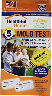 Diy mold test mold testing kit 3 tests lab analysis and expert healthful home 5 minute mold test solutioingenieria Images