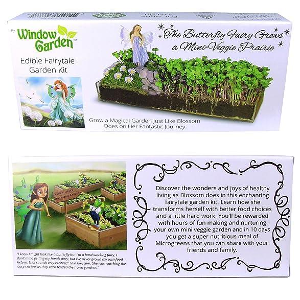 Amazon.com : Window Garden Edible Fairy Garden Kit With An Enchanting  Fairytale And Accessories   Lavender : Garden U0026 Outdoor