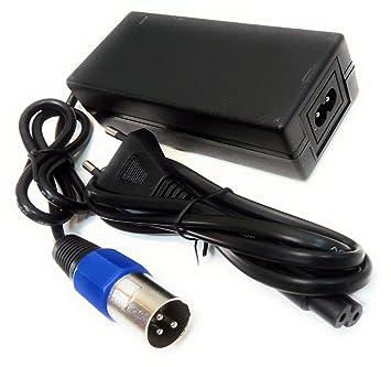 Cargador inteligente de 24V para patinete eléctrico IZIP ...