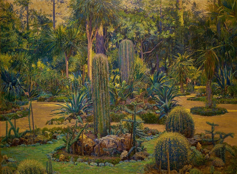Amazon Com Evelyn Mccormick Arizona Gardens Del Monte Cactus