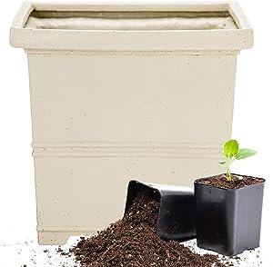 Martha Stewart Garden, Square False Bottom Planter, 12 Inch, Gray