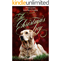The Christmas Key (River's End Mystery Romance Book 4)