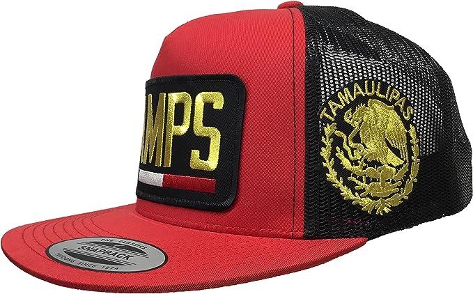 Mexico Jalisco {JAL} Logo Federal al lado All Gold 2 Logos hat Snapback