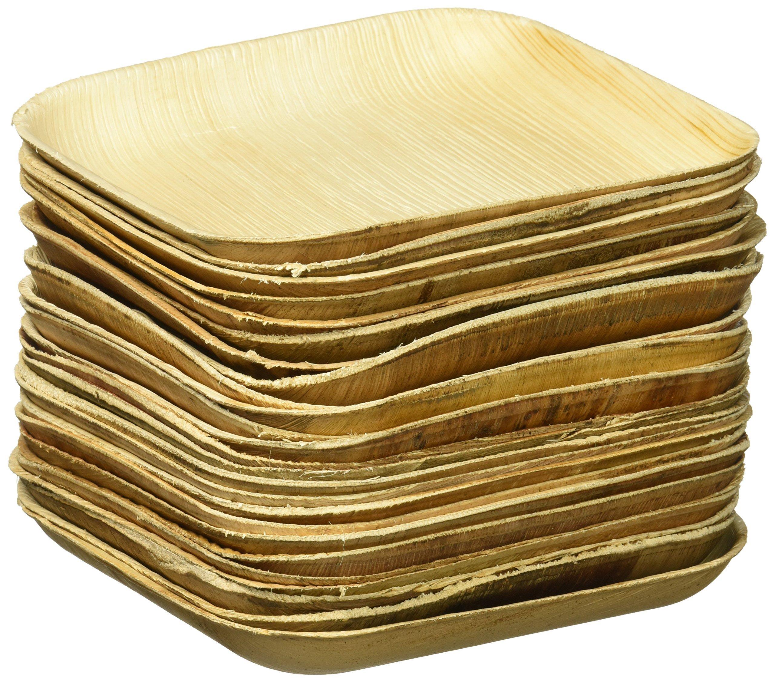 VerTerra 6  x 6  Square Palm Leaf Plates - Compostable Dinnerware - Appetizer and  sc 1 st  Amazon.com & Amazon.com | Verterra Compostable Dinnerware 8