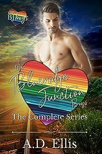 The BJ Boys Box Set: The Blueridge Junction Boys Complete 3 Book Series
