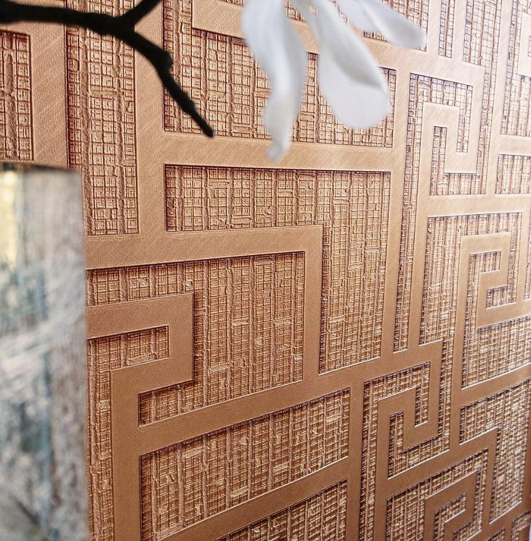 Versace \'Parvus Griechisch Schlüssel\' Designer Geometrische Tapeten ...
