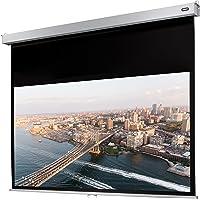 celexon manuell ausziehbare Rollo-Beamer-Leinwand Professional Plus - 300 x 169 cm - 16:9 - Gain 1,2 - Full-HD und 4K