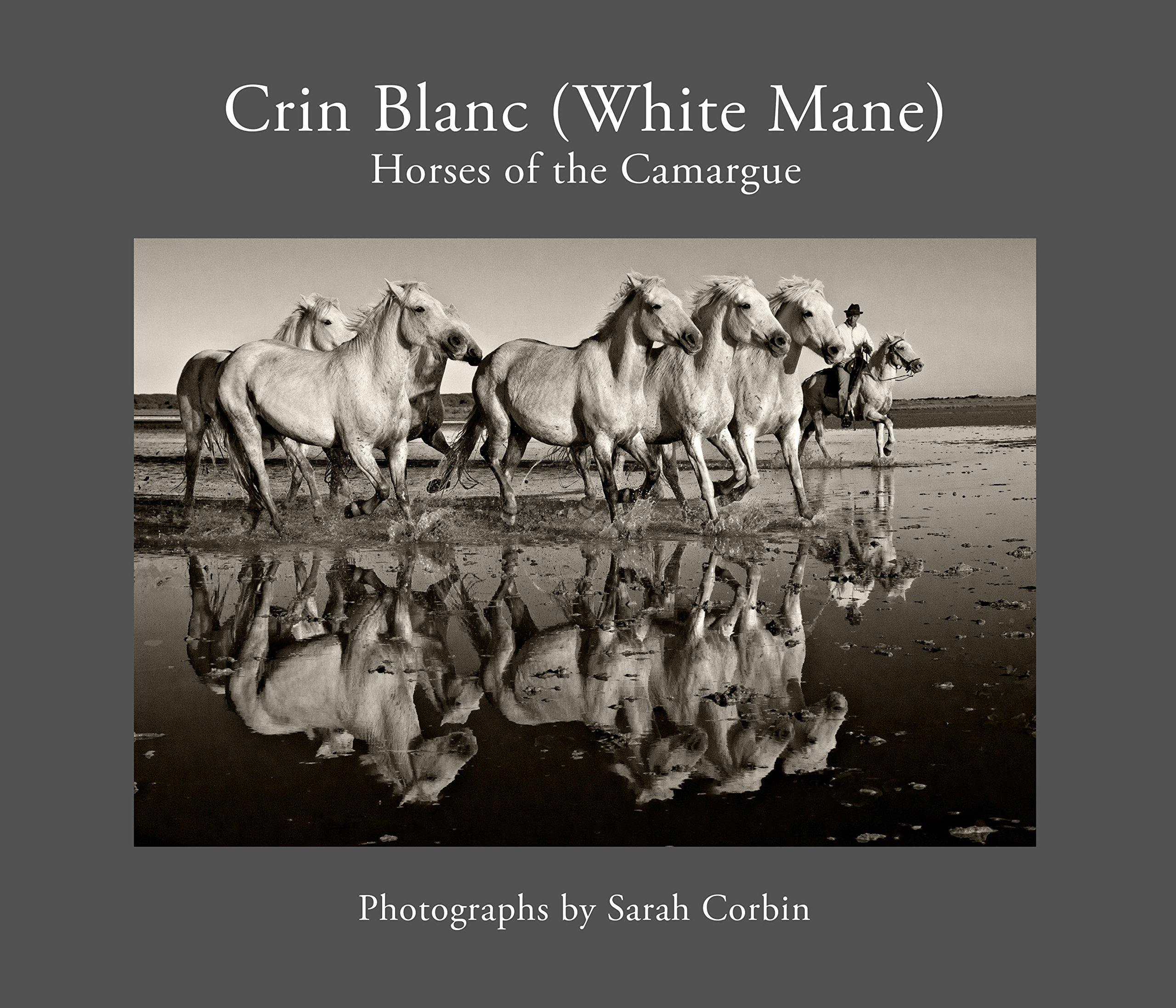 Crin Blanc (White Mane): Horses of the Camargue PDF