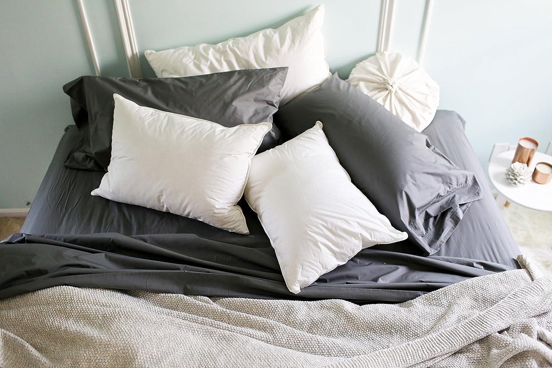 Kess InHouse afe Images Starfish Pattern II Teal Pink Illustration 26 Round Floor Pillow