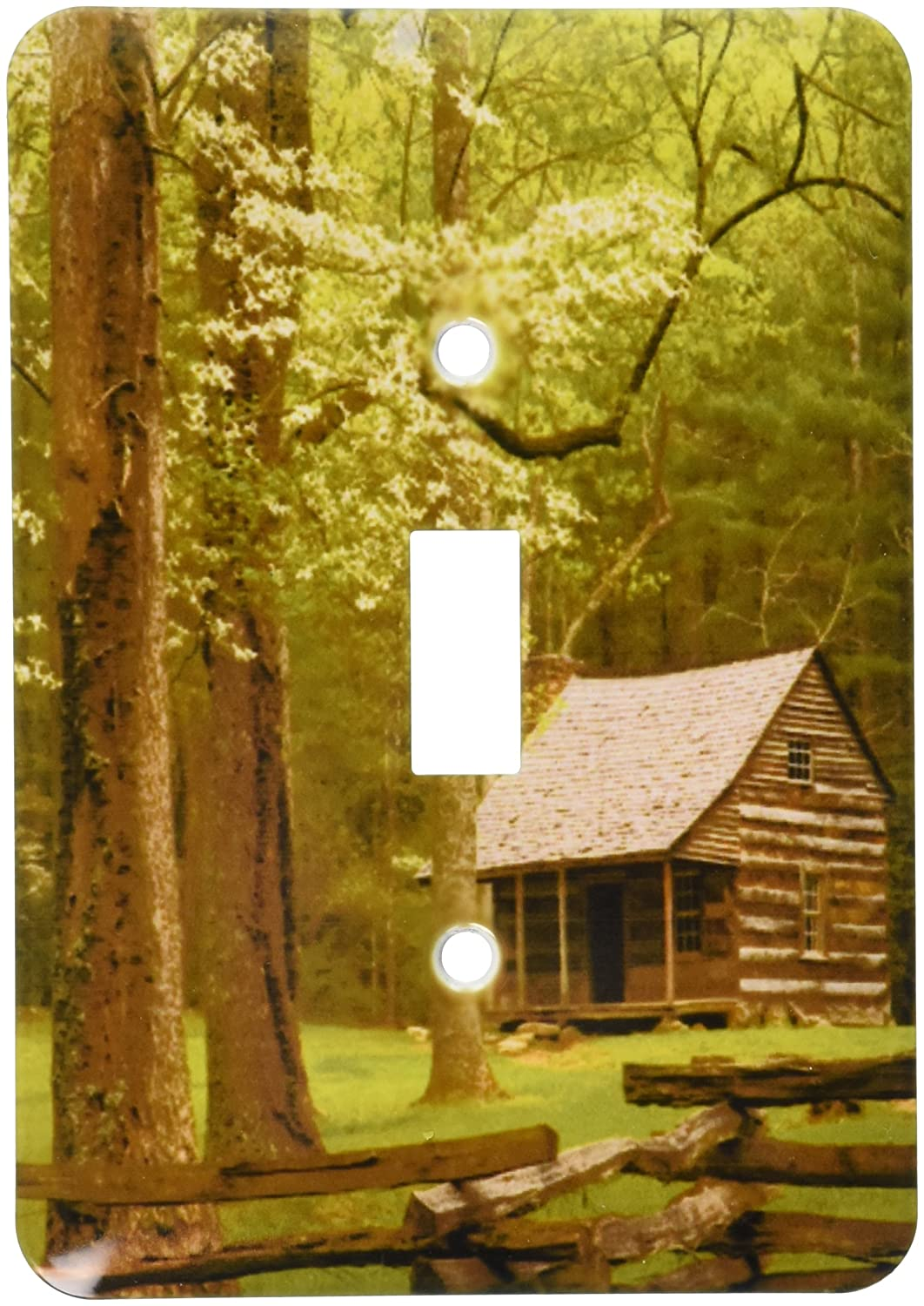 Great Smoky Mountain Np Cades Cove Cabin Us11 Jwl0271 Joanne Wells Single Toggle Switch 3dRose lsp/_89394/_1 Tennessee