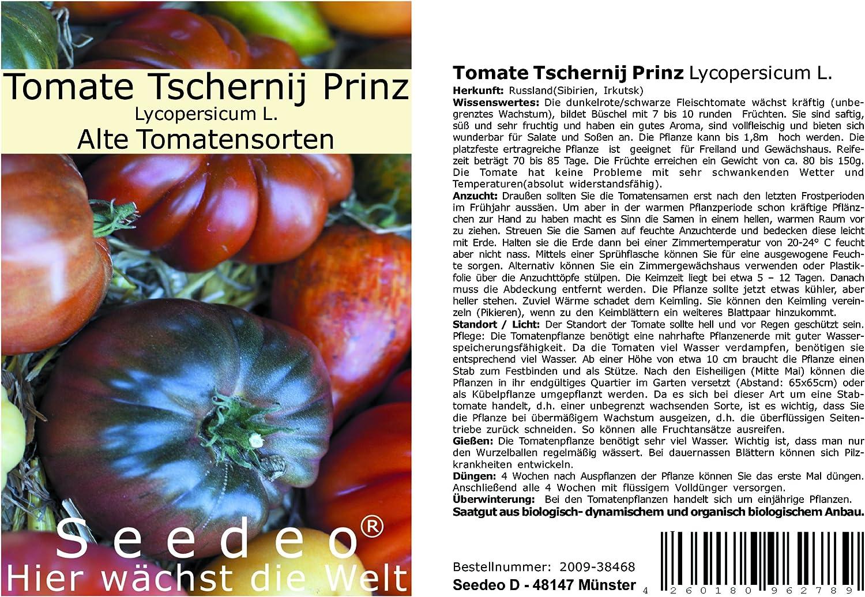 keimzeit tomaten