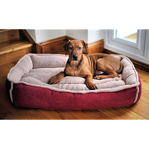 Luxury Dog Beds Amazon Co Uk