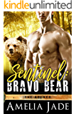 Sentinel: Bravo Bear (The Agency Book 1)