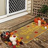 Ruisita Fall Welcome Doormat Fall Leaves Decorative Doormat Autumn Durable Non Slip line Front Doormat for Indoor Outdoor Flo