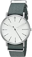 Skagen Men's 'Signatur' Quartz Stainless Steel Casual Watch, Color:Green (Model: SKW6377)