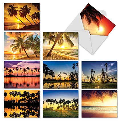 Amazon 10 note cards with envelopes assorted palm beaches 10 note cards with envelopes assorted palm beaches blank greeting cards m4hsunfo