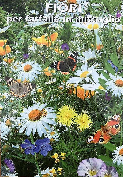 Giardinaggio Fiori.Semi Utensili Per Il Giardinaggio Fiori Fiori Per Farfalle In