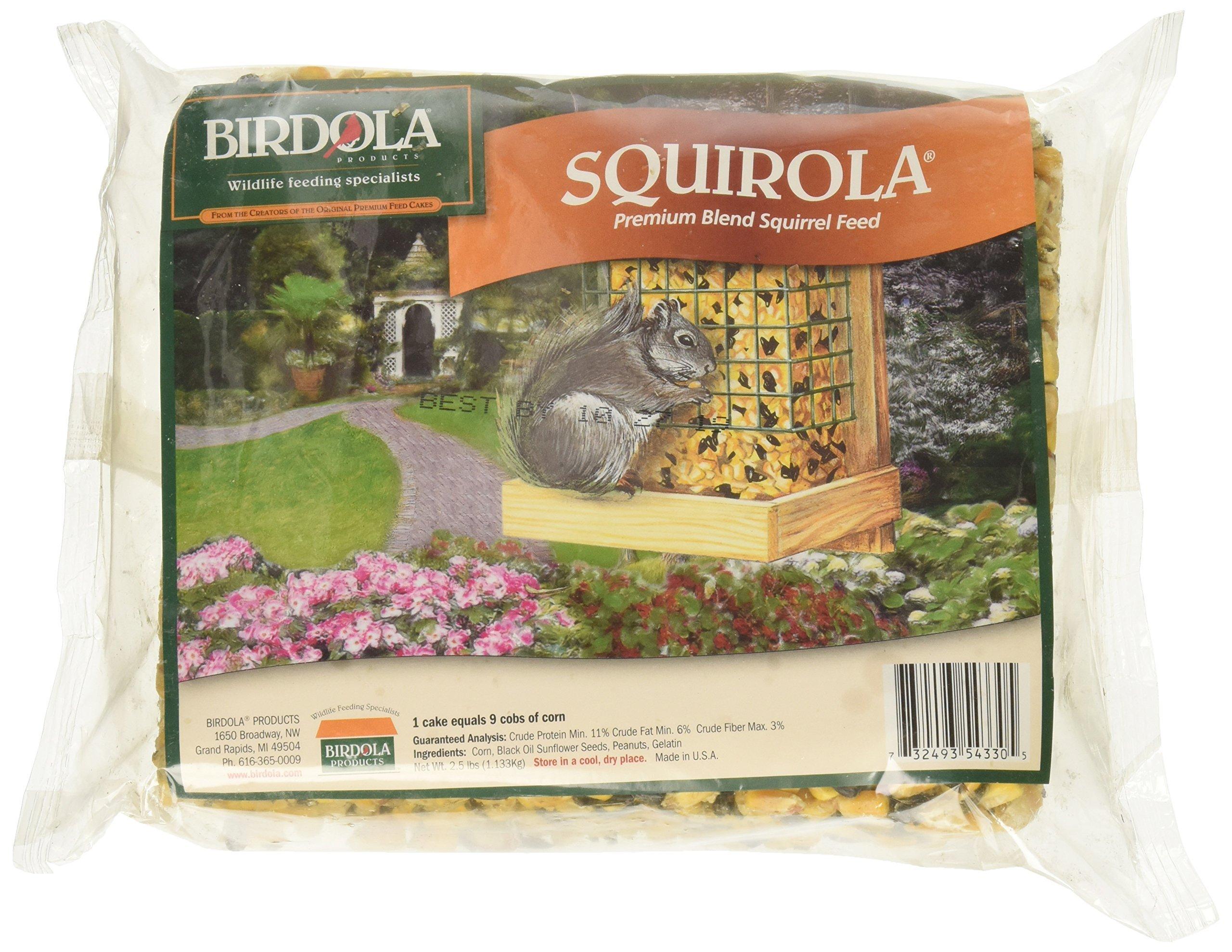 Birdola Squirola Premium Blend Squirrel Feed, 2.5-lb